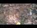 공원 일기 영지버섯 기타 버섯 토종벌 목청 재벌 피는목련 말하는 노인들