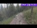산에서 자전거 타다 곰을 만난 청년들
